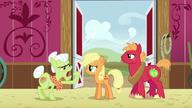 S06E23 Młodzi Applejack i Big Macintosh kłócą się