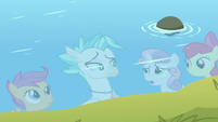 Sweetie Belle sympathizing with Terramar S8E6