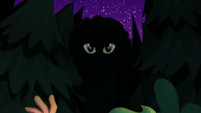 Gloriosa Daisy's eyes appear in the shadows EG4