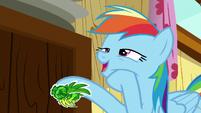 """Rainbow Dash """"too egotistical"""" S8E20"""