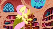 S01E03 Fluttershy czyści półki