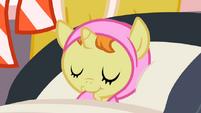 S02E13 Śpiąca Pumpkin Cake