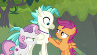 """Scootaloo """"not to mention more you!"""" S8E6"""