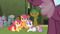 The Cutie Mark Crusaders are done fighting S2E01