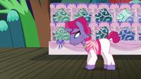 Trainer pony 2 looking sad S6E20