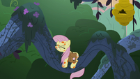 Fluttershy collapses onto the tree branch S7E20