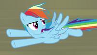 """Rainbow Dash """"how do you get rid of them?!"""" S9E21"""