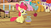 S04E15 Apple Bloom alchemik.png