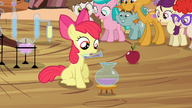 S04E15 Apple Bloom alchemik