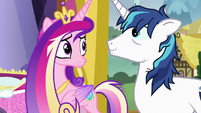 Cadance and Shining look relieved at each other S7E3