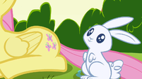 Fluttershy's cutie mark appears S1E23