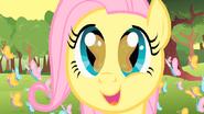 S01E23 Mała Fluttershy śpiewa do motylków