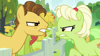 Young Grand Pear vs. young Granny Smith S7E13