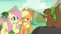 Fluttershy listening to the squirrel S8E23