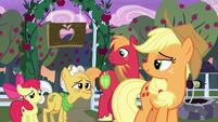 Grand Pear enters Sweet Apple Acres S7E13