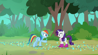 """Rainbow Dash """"don't you see?"""" S8E17"""
