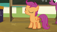"Scootaloo answers Snips ""nope"" S9E12"