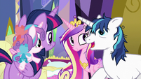 """Shining Armor """"my friend from the royal guard"""" S7E3"""