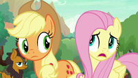 "Fluttershy ""but you don't speak?"" S8E23"