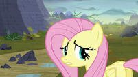 """Fluttershy """"oh, you poor things!"""" S5E23"""