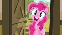 Pinkie Pie -hey cousin!- S4E09