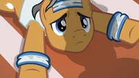Quibble looking up at Rainbow Dash S9E6