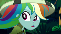 Rainbow Dash confused by the parrot SS12