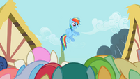 Rainbow Dash enjoying the attention S2E08