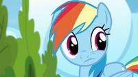 Rainbow Dash looks to her left S6E7