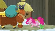 S07E11 Pinkie kłania się księciu Rutherfordowi