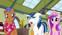 """Shining Armor """"it's small like her!"""" S7E3"""