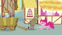 Cranky Doodle Donkey angry at Pinkie S02E18