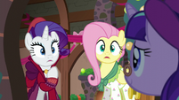 Flutterholly and Merry shocked of Snowfall's appearance S06E08