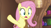 """Fluttershy """"Zecora, you didn't rhyme!"""" S7E20"""