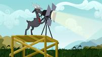 Goat spotlight S02E19