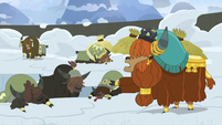 Prince Rutherford tells yaks to keep digging S7E11