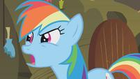 "Rainbow Dash ""what about the cauldron?"" S1E09"