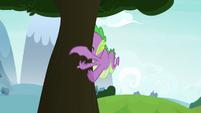 Spike slams into a tree S8E24