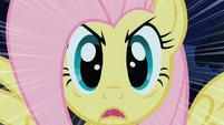Fluttershy Stare S01E17