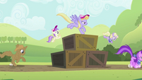 Ponies getting up and over the crates S2E05