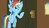 "Rainbow Dash ""did we do it?"" S7E2"
