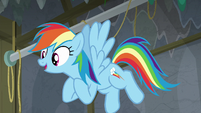 """Rainbow Dash """"starring in our play?"""" S8E7"""