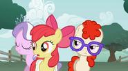 S01E12 Twist, Apple Bloom i Tiara