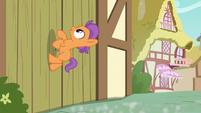 Tender Taps gallops up a wooden door S6E4