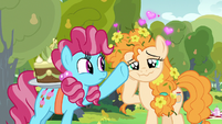 Chiffon Swirl waves her hoof in Pear Butter's face S7E13