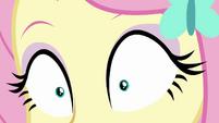 Close-up on Fluttershy's eyes CYOE2a