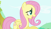 "Fluttershy ""It's getting awfully late"" S4E18"