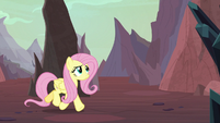 Fluttershy following the sound S9E9