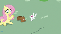 Angel-Fluttershy squealing with horror S9E18