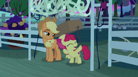 """Apple Bloom """"ready for the bountiful harvest"""" S9E10"""